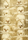 Background with human skulls and bones Royalty Free Stock Photo