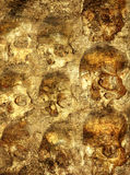 Background with human skulls Stock Photo