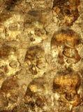Background with human skulls Stock Photo