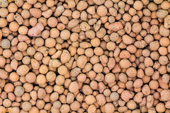 Background of hydroponic clay pellets Royalty Free Stock Image
