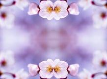 Background -I. Spring background making with Photoshop Stock Illustration