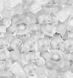 Background with ice cubes white  light Stock Image