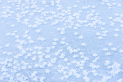 Background ice on the frozen pond with snowflakes abstract form Royalty Free Stock Image