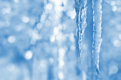 Background with icicles Stock Photography