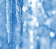 Background with icicles Royalty Free Stock Image