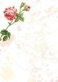 Background illustration 08 Stock Image