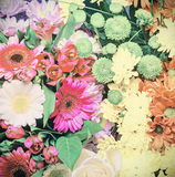Background image of the colorful flowers Royalty Free Stock Photos