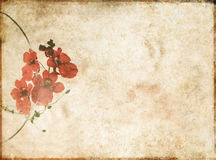 Background image with earthy texture Royalty Free Stock Images