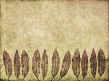 Background image with earthy texture Royalty Free Stock Photo
