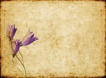 Background image with earthy texture Royalty Free Stock Image