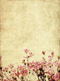 Background image with earthy texture Stock Images