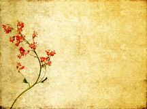Background image with floral elements Royalty Free Stock Photography