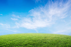 Background image of lush grass field under blue sky. Stock Images