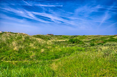 Background image of lush grass field under blue sky North Sea, Z Stock Image