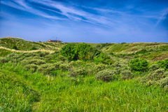 Background image of lush grass field under blue sky North Sea, Z Stock Photo