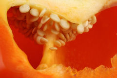 Background of the inside of an orange paprika Royalty Free Stock Photography