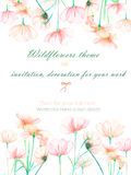 Background, invitation card, template postcard with the tender pink cosmos flowers, hand drawn on a white background Stock Images