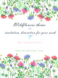 Background, invitation card, template postcard with the yellow wildflowers, clover flowers and grass Stock Photo