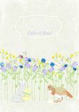 Background invitation rabbit with egg, bird and flowers. vector invitation Royalty Free Stock Photo