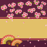 Background with Japanese cherry tree sakura and fans. Oriental background with two folding fans and branch of pink blossoming sakura - Japanese cherry tree with Royalty Free Stock Image