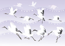 Background with Japanese cranes Royalty Free Stock Photo