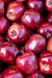Some red apples. Background of juicy red apples Stock Photos
