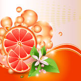 Background with juicy slices of grapefruit. Abstract background with juicy slices of grapefruit and flowers royalty free illustration