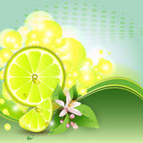 Background with juicy slices of lemon fruit. Abstract background with juicy slices of lemon fruit and flowers royalty free illustration