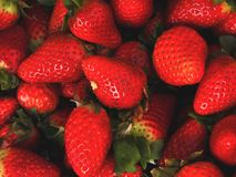 Strawberries background macro with daylight stock photography