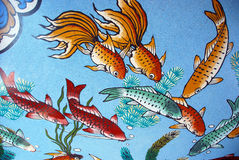 Background with koi fish Stock Photos