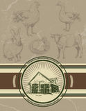 Background with label for butchery. Icons of rabbit, hen, cock, Stock Image
