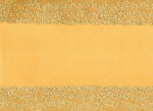 Background with lace frame Royalty Free Stock Images