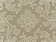 Background lace white Royalty Free Stock Photography