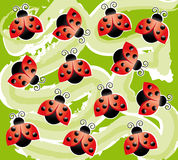 Background with ladybugs Stock Image