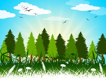Background Landscape Shows Summer Time And Backgrounds Stock Images