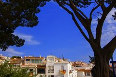 Background landscape view of white houses of cadaqués and a huge old tree on the embankment, cadaqués stock images