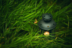 Background with lantern in grass Royalty Free Stock Photo