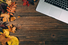 Background with laptop and autumnal leaves Royalty Free Stock Photos