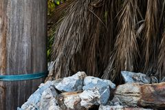 Background of large stones with palm leaves. 4k. stock photo