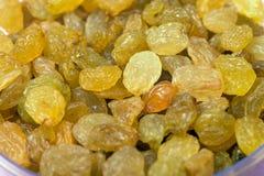 Background of large yellow raisins close up.  Stock Image