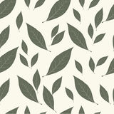 Background laurel leaves. Condiment food seamless pattern Royalty Free Stock Images