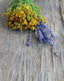 Background of lavender and St Johns wort Royalty Free Stock Photography