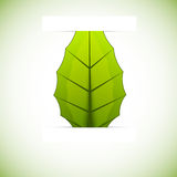 Background with leaf. Abstract bright green background with one leaf Stock Illustration