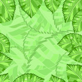 Background leaf Royalty Free Stock Image