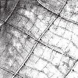 Background Leaf Overlay vector illustration