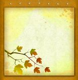 Background with leaves Stock Image