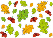 Background leaves. Seamless bright and beautiful background of oak leaves and acorn stock illustration