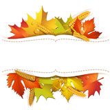 Background with leaves Royalty Free Stock Photos