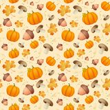 Background with leaves, acorns and pumpkins. Royalty Free Stock Image