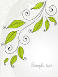 Background with leaves and curls. Royalty Free Stock Image